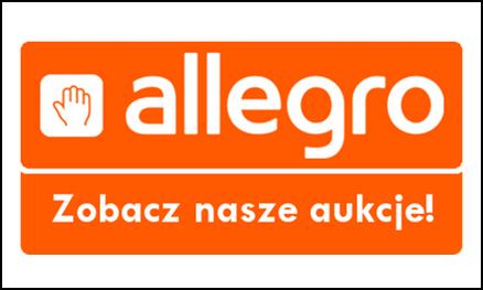 allegro_banner_2